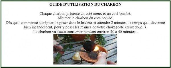 guide_dutilisation_des_charbons
